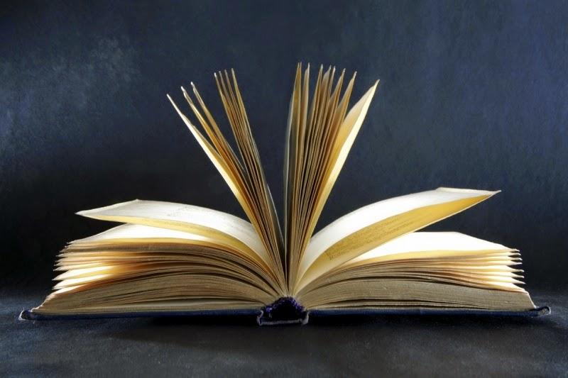 Libro nuevo abierto